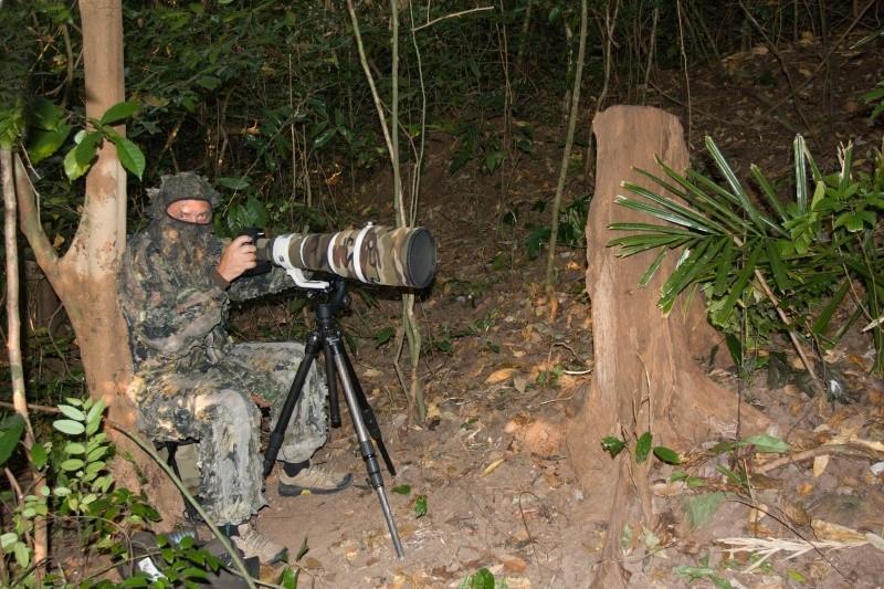 Fotografovanie endemického Chriašteľa andamanského v pralese Chidiyatapu Južný Andaman, Andamanské ostrovy február 2015